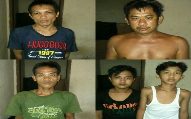 5 Orang Pencuri Kambing Diringkus