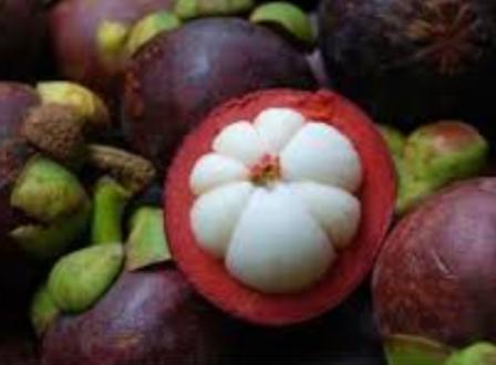 Antisipasi Tekanan Darah Tinggi Dengan Kulit Manggis