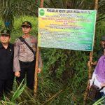 PN Lubuklinggau Sita Eksekusi Lahan Perkebunan Kelapa Sawit