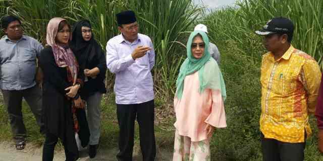 Ada Apa ya? Anak Perusahaan Humpuss Group Tinjau Perkebunan Tebu Aceh Tengah