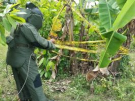 Polisi Temukan Bom Rakitan sisa Komflik Aceh