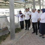 Mawardi Ingin Kebun Raya Sriwijaya  Jadi Pusat Penelitian Lahan Basah