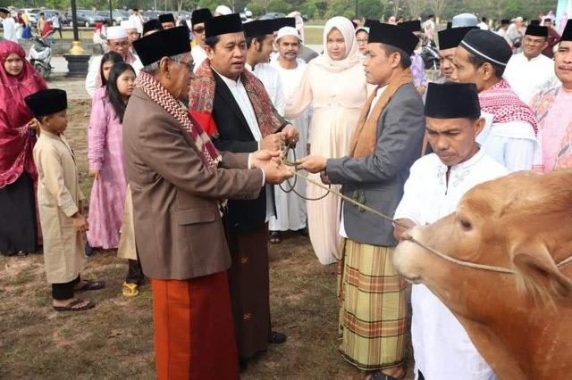 Bupati Banyuasin H. Askolani SH., MH. didampingi wakil Bupati H. Selamet secara simbolis membagikan 11 ekor sapi kepada beberapa masjid di wilayah kabupaten Banyuasin di halaman masjid Al-Amir Pangkalan Balai Minggu (11/09/19)