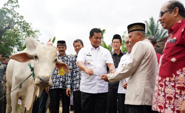 Didampingi Wakil Bupati Banyuasin, Kadis Buntanak Banyuasin, Kepala Desa Biyuku, Ketua DPRD Banyuasin dan Asisten I Banyuasin, H. Askolani menyerahkan Sapi untuk masyarakat